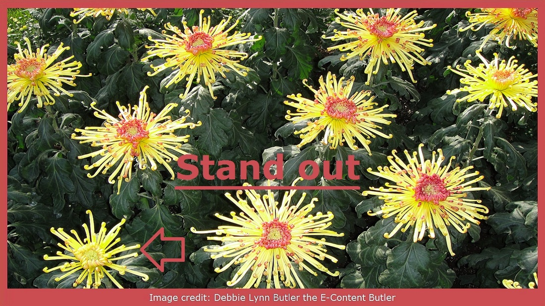 """Stand out"" on photo of yellow mums by Debbie Lynn Butler the E-Content Butler"