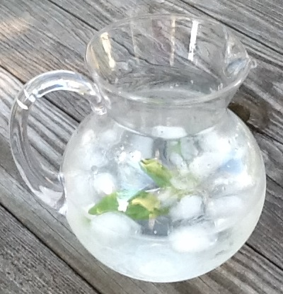 photo of iced water with basil by Debbie Lynn Butler the E-Content Butler