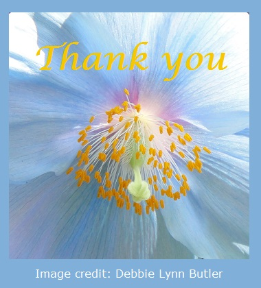 "Blue poppy overwritten with gold ""Thank you"" image by Debbie Lynn Butler the E-Content Butler"