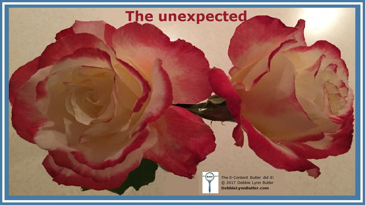 """The unexpected"" and photo of love and peace roses blooming after frost by Debbie Lynn Butler the E-Content Butler"